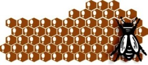 lebah madu vector